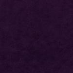 489-violet
