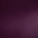 595 Violet
