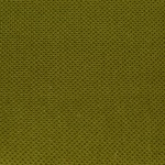 pistachio-9