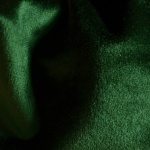 19 AMAZON GREEN SHINE