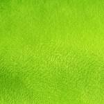 26 SPRING GREEN